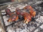 Barbeque Chicken Heads