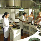 Thai Cooking Class DVD