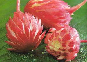 Radish Flower Vegetable Carving