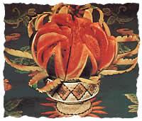 Watermelon Lotus