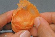 Carrot flower 3