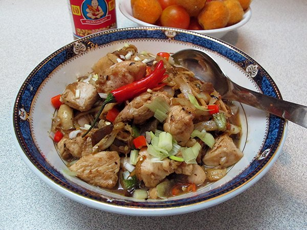 Ginger chicken stir fry recip temple of thai chicken ginger stir fry is a favorite amongst those who prefer less spicy asian dishes especially kids the addition of red pepper adds color forumfinder Choice Image