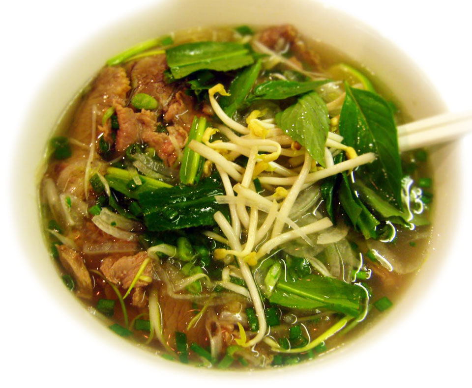 Pho Bo - Vietnamese Beef Soup Recipe » Temple of Thai